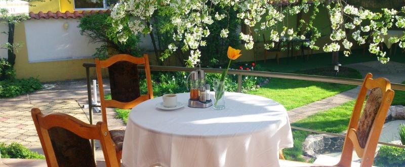 Ο υπέροχος κήπος του ξενοδοχείου, προσφέρεται για πρωινό και χαλάρωση.